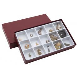 7032 Raccolta di 15 fossili
