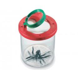 4026 Ingranditore centimetrato per insetti