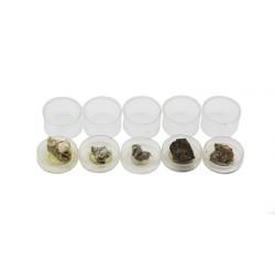 7010 Colección de 5 minerales