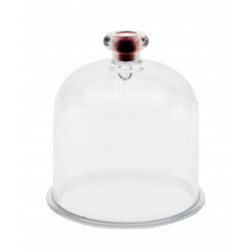1069 Bell jar