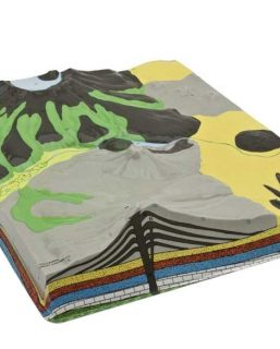 HS501Set di 4 modelli geologici